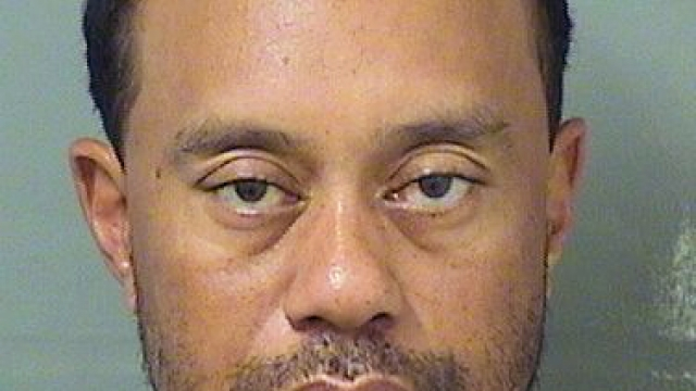 Dash cam footage from Tiger Woods' arrest released