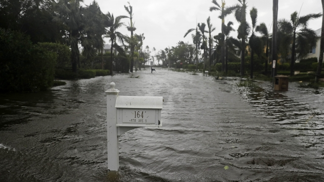 Florida turns to relief efforts as Irma downgraded