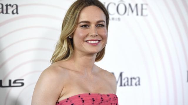 Brie Larson advocates for diverse critics at film event
