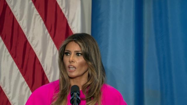 Melania Trump 'hates' to see families separated at border