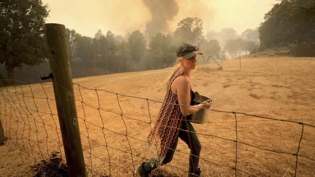 Biggest blaze in California history challenges firefighters