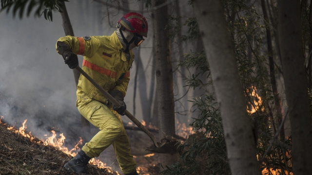 Portugal fights major wildfire as Europe's heat wave lingers