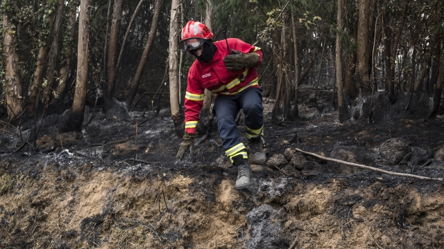 Wildfires torment Portugal, Spain as France feels the heat